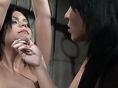 Watch the lesbo BDSM action with Amina and Kelly Roshe. Sexual dominant woman is doing a lot of kinky things to give her enslaved girlfriend a lot of painful pleasure.