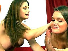 Pretty brunette hotties Abby Cross and Allison Moore with sexy body figures and juicy hooters take off clothes and arousing underwear and gives memorable blowjob session to tall stud.