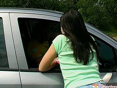 Sweet brunette hitchhiker gets into the car and sucks driver's cock for cum