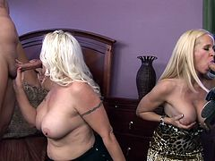 Like seeing sexy cougars, that are delighting themselves with hard cocks? Then why not see this! These three smoking hot bitches with long golden hair, big boobs and mouths, that burn with desire for jizz, are having a great time with two hard dicks. Stick around and find out which one will get cummed first