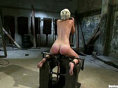 The butt cheeks of the blonde Chloe Camilla are going to be all red with spanking and she will also be tortured and toyed in this BDSM vid.