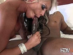 Carmen Jaye is one of the hottest busty babe.Watch her sucking on big black cock and rides it nicely on it.Pussy fucking and butt hole fingering action.