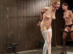 Couple of bitches slaved in bondage scene