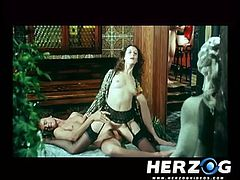 Check out these vintage hardcore scenes from Germany! You will see horny sluts having fun with big cocks and sticking them in their hairy holes!