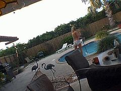 Peppering blond whore in tiny floral printed bikini gets lured by a horny pool cleaner. She takes off her bikini in front of him to demonstrate mind taking body in steamy sex clip by Pornstar.
