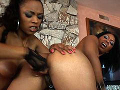 Breathtaking ebony whore Porshe Carrera fucks her girlfriend's pussy with a big strap-on dildo in doggy position and then she makes her worship her fake phallus.
