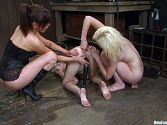 A dominant brunette is going to fist fuck two blondes after taking them out of their cage where they were being naughty doing a 69. They are also sit over sybians.