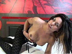 Bruna Azevedo lays back on her bed while wearing her sexy stocking and heels. She pulls her stockings down and whips out her thick cock. She lifts her legs up behind her head so you have a nice view of her asshole. She rubs her asshole in a circle and then strokes her rock hard tranny cock for you.