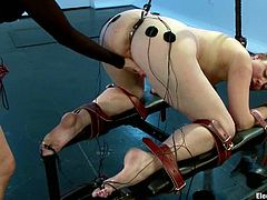 Horny Sovereign licks Lea Lexis' toes and gets tied up. Then she gets her ass stuffed with butt hook and pussy drilled with a strap-on.