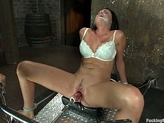 Stunning Ashli Ames spreads her legs and takes big dildo in her vagina. Later on she gets tied up and toyed by the fucking machine.