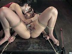 Time for BDSM action and to see how much fun Sasha Grey is having dominating her sex slave Satine Phoenix in this femdom video.