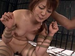 This Japanese slut is in for some unbelievable torture. She is locked in a prison and then tied up with rope. She struggles to get free but it is no use. A guard takes a hot candle wax and pours it on her tits and ass. He then cums on her chin.