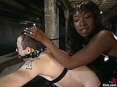 Elliot Skellington gets bounded by kinky Stacey Cash. After that this ebony mistress whips his ass and toys the guy deep with a strap-on.