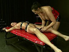 21 Sextury femdom sex clip is what you need to jizz at once. Kinky busty whore in red corset fixes submissive gal with leather laces and then polishes her wet pussy with a black huge dildo causing her loud moans.