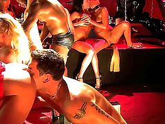 Randy pornstars Chris Charming, Erik Everhard, Jenna Haze, Jewell Marceau, Mark Davis, Mr. Pete, Nacho Vidal, Nici Sterling, Nicole Sheridan and Voodoo in kinky outfits get nasty and have awesome orgy.