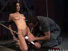 Kinky rapacious and long legged brunette gets fixed with BDSM chains. All naked chick moans when horny dude pours hot wax onto her tits. The spoiled mad fucks her pussy with a candle madly causing her loud moans of delight and pain.