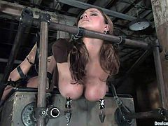 Busty mom Christina is strapped tight in a bondage device. With metal bars and leather straps, the bitch can't move and all she can do is to endure what's about to happen. Her panties are removed and the fun begins. At first the executor uses a dildo and drills her pussy before he rubs her cunt with a vibrator.