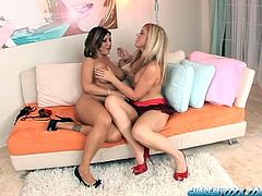 Claire Dames and Kimber Winters are having fun with some guy in the bedroom. They suck and rub his schlong ardently and also rub it against their awesome boobs.