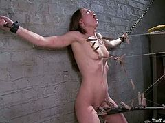 This amazing siren Casey Calvert gets tied up and twitched. The hardest part of this porn scene is, when babe gets geared with a heavy wooden bar on her back!