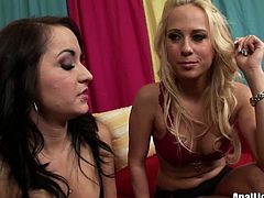If you're ready to jizz all over the place of delight, than this Pornstar sex clip is what you need. Kinky brunette and blondie are rather pale. Their tits are small. But long legged lesbos will impress you with their pussy eating skills for sure.