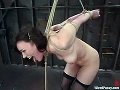 Lewd brunette milf Dana Dearmond lets Princess Donna Dolore put her into irons in a basement. Donna tortures the bitch and then destroys her twat with a dildo.