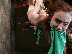 The redhead Iona Grace will be hung upside down from the ceiling with ropes while she gets her shirt on her mouth so she can't scream or anything.