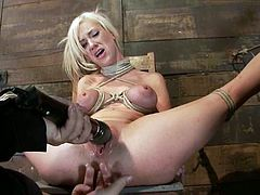 The blonde Kaylee Hilton will get her tits tied till they are purple and then get her pussy toyed in this bondage session.