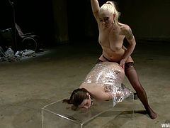 In this scene, we can clearly see that Lorelei Lee hates Serena Blair so bad! Well, she tortures her pretty hard that she begs her to stop this BDSM fantasies!