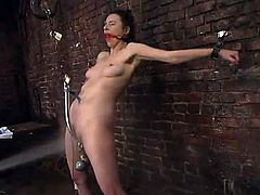 Hot brunette Anastasia Pierce lets some guy chain her in a basement and stuff her holes with toys. She gets her cunt stunningly pounded with a dildo and enjoys it much.