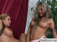 You are lucky to have a chance to enjoy three well stacked lesbian babes for a one pass. Just click here and be ready for unforgettable lesbian orgy for free.