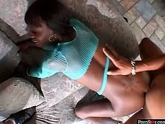 Skinny black amateur in turquoise fishnet tank is not afraid of anal sex despite her young age. She gets fucked in doggy and later in reverse cowgirl style in sizzling hot Pornstar sex video.