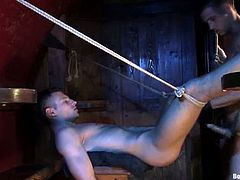 Two guys are going to dominate a submissive dude in this gay BDSM threesome with lots of cock sucking and ass spanking action.