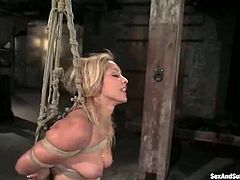 This desirable blondie Isis Love is enjoying some act of sadism that she is objected to. Babe gets hogtied and chained. Pain and cock makes her reach orgasm.