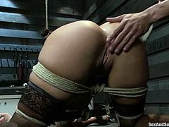This petite and naughty Asian siren London Keyes belongs to Karlo Karrera. She gets gagged, hooked and fucked in her Asian snatch!