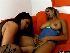 Are you looking for the hottest lesbian sex video? It's right here. Two gorgeous lesbian babes please each others slits with sex toys.