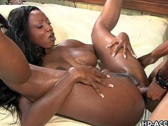 Diamond Jackson is blessed with a firm and round pair of tits.  And when this ebony babe gets fucked with a white dick they bounce around and look simply amazing!
