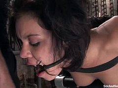This slender brunette honey is such a loyal sex slave. She gets belted and gagged after a hot blowjob. Then he bends her over and sticks his penis into that wet twat!