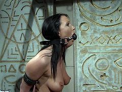 Submissive busty brunette harlow sits bandaged while a perverted mistress pins her hard nipples with metal pegs and later tickles her soles with spiked metal roller in BDSM-styled sex video by 21 Sextury.