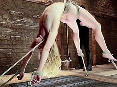 This divine and smoking hot blond siren Bella Bends gets slaved and tortured. She is tied up with ropes and her master uses some different tools to make her stun.