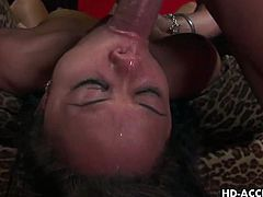 This sexy asian chick shows her great oral skills! He doesn't waste time and sticks his big shaft deep inside her wet and warm mouth!