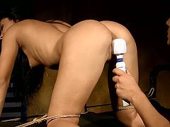 Torrid brunette babe is getting fucked bad doggy style. BDSM