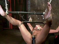 Sexy brunette Aleksa Nicole gets bound by some guy in a basement. The dude tortures the cutie and then fingers her snatch and drills it with a dildo.