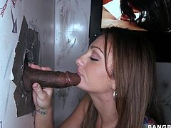 Cocks of all size and color come through gloryholes so Abella Johnson can suck them and taste them with lust.