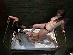 This busty and curvy blond siren is being treated by Gia Dimarco and Princess Donna Dolore in this femdom threesome. Chicks are so excited to torture her!