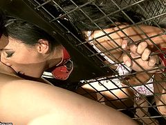 Spoiled bitch is sitting in a small cage. This is her punishment for being bad ass slut. Tough mistress thrust stick in her mouth making her suck it like juicy cock. Then she serves her pussy to submissive sex partner.