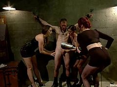 Total femdom BDSM in a hot female domination! Three smoking hot mistresses are making fun on this dude! They tie him up and press on his balls with their shoes.