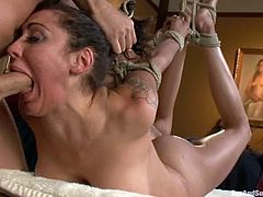 James Deen binds sexy brunette bitch Princess Donna Dolore and torments her. He spits into her eyes and pulls her by the pussy lips and then rips her butt apart with his schlong.