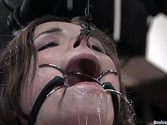 Two girls get tied up and gagged. Then they also get their bodies tortured with clothespins. Surely, they also get their pussies toyed hard.