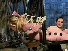 Check out how Hydii May gets toyed while she's totally immobile in this lesbian bondage and domination video.