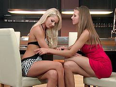 Anneli and Juliette are two glamorous lesbians. They talk for a while and then take their clothes off. After that they finger and lick pussies lying on a table.